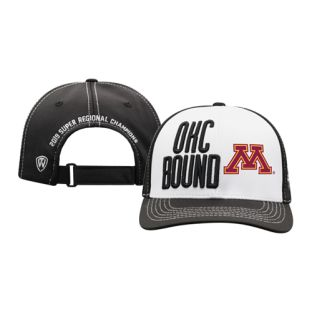 Softball 2019 Super Regional Champions Hat